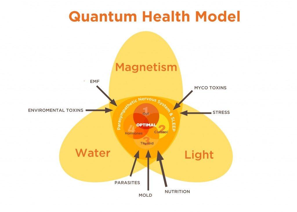 Quantum Health Model
