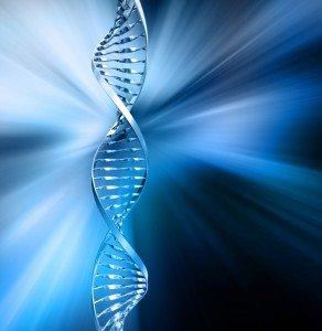 DNA Methylation & Epigenetics